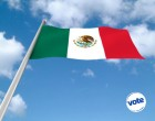 Romero Hicks: Mexican electronic voting will be ready in 2018